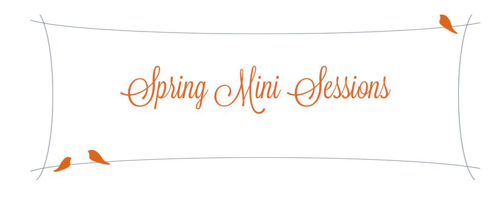 springminisessions